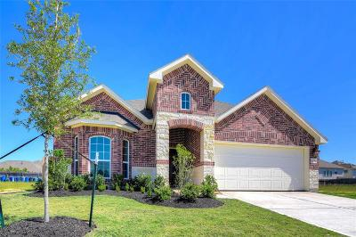 Katy Single Family Home For Sale: 24650 Lakecrest Pine Trail