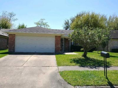 Katy Single Family Home For Sale: 20079 S Pecos Valley Trail