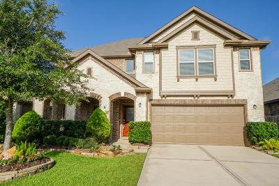 Single Family Home For Sale: 8111 Briscoe Foster Crossing