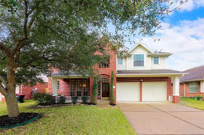 Houston Single Family Home For Sale: 8422 Fredericksburg Lane