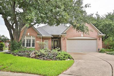 Houston Single Family Home For Sale: 1303 Mission Chase Drive
