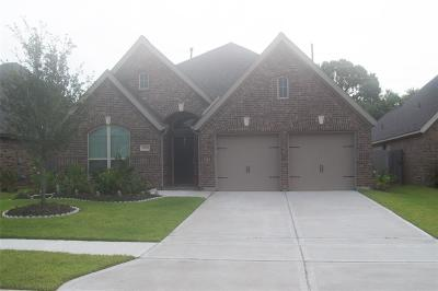Pearland Single Family Home For Sale: 13205 Sage Meadow Lane