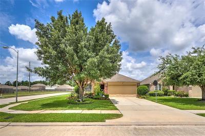 Houston Single Family Home For Sale: 13303 Arden Ridge Lane