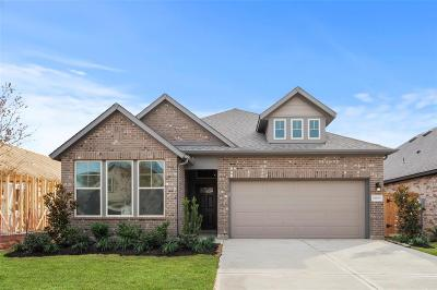 Fulshear Single Family Home For Sale: 30835 Lake Spur Manor Drive