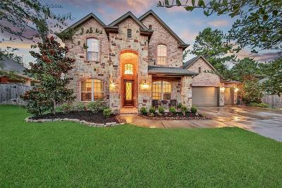 Montgomery TX Single Family Home For Sale: $397,000