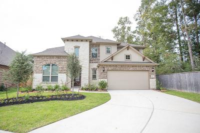 New Caney Single Family Home For Sale: 18806 Swansea Creek Drive