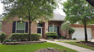 Galveston County, Harris County Single Family Home For Sale: 17102 Cobble Shores Drive
