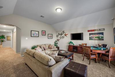 Houston Single Family Home For Sale: 1919 Sophia