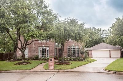 Houston Single Family Home For Sale: 14119 Tealstone Falls Court