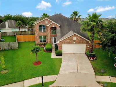 Katy Single Family Home For Sale: 21527 Hickman Manor Lane