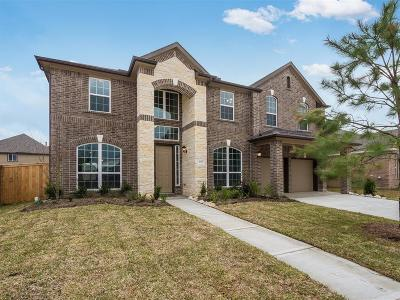 Pearland Single Family Home For Sale: 2315 Dolan Falls Lane