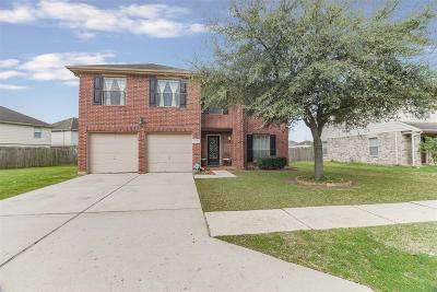 Houston Single Family Home For Sale: 9827 Golden Prairie Lane
