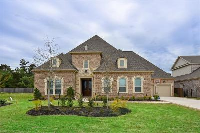 Conroe Single Family Home For Sale: 2005 Bluestem Drive