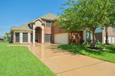 Houston Single Family Home For Sale: 9931 Heron Meadows Drive