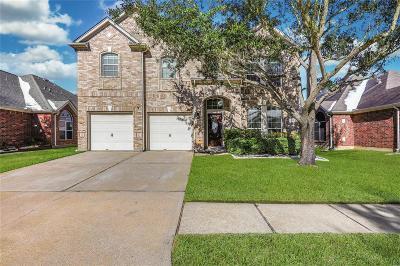 Houston Single Family Home For Sale: 3015 Providence Oak Street