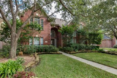 Houston Single Family Home For Sale: 14306 Summerwood Lakes Drive