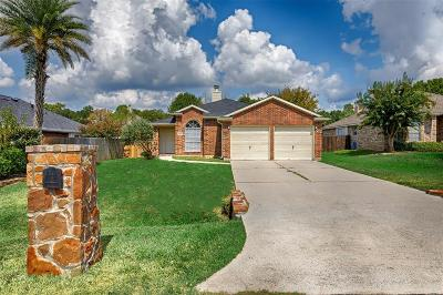 Cape Conroe, Cape Conroe 01, Cape Conroe 02 Single Family Home For Sale: 307 Lake View Drive