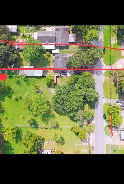 Houston Single Family Home For Sale: 2056 Johanna Drive