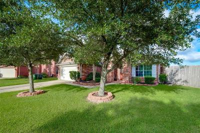 Sugar Land Single Family Home For Sale: 5531 Gatesprings Lane
