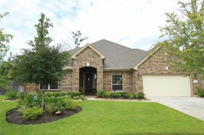 New Caney Single Family Home For Sale: 23303 Robinson Pond Drive