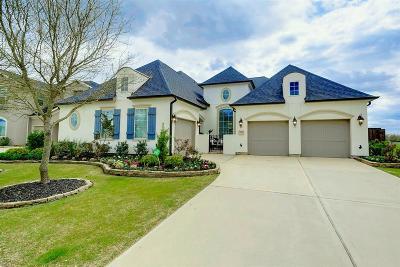 Katy Single Family Home For Sale: 7111 Prairie Grass Lane