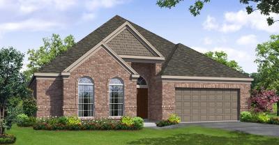 Rosenberg Single Family Home For Sale: 5018 Windy Poplar Trail