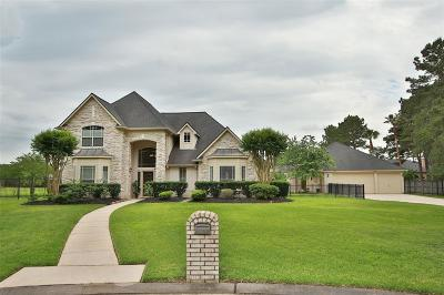 Cypress Single Family Home For Sale: 17311 Scenic Lake Court