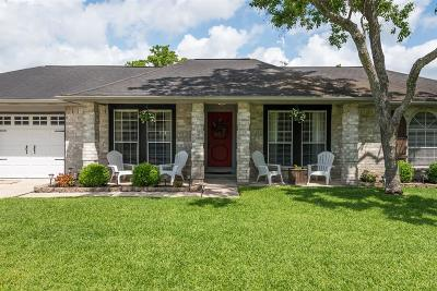 Friendswood Single Family Home For Sale: 1105 W Castlewood Avenue
