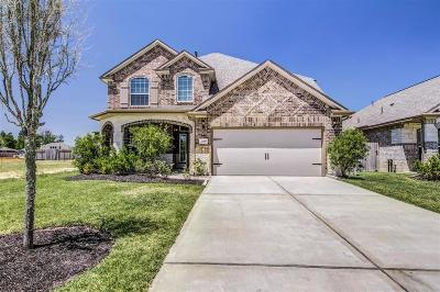 Porter Single Family Home For Sale: 21607 Whistling Straits Drive