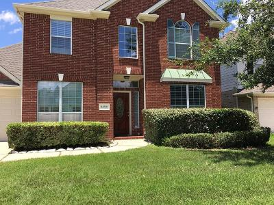 Houston Single Family Home For Sale: 12710 Brookfield Park