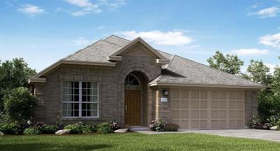 Dickinson Single Family Home For Sale: 3060 Camelia View Lane