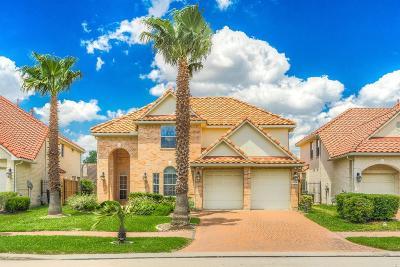Houston Single Family Home For Sale: 19038 Villa Bergamo Lane
