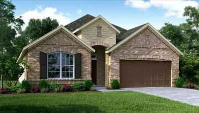 Manvel Single Family Home For Sale: 7014 Harbor Valley Lane
