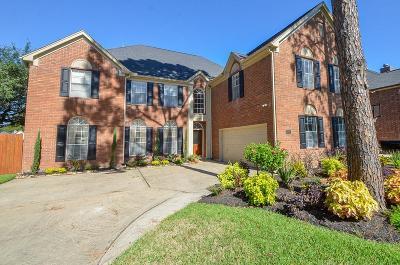 Houston Single Family Home For Sale: 7915 Capri Circle