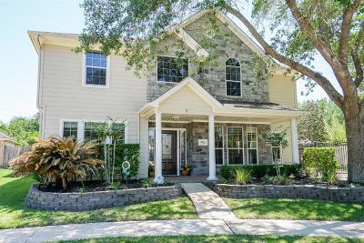Missouri City Single Family Home For Sale: 9722 Harrison Lane