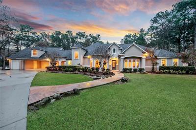 Magnolia Single Family Home For Sale: 17102 Indigo Hills Drive