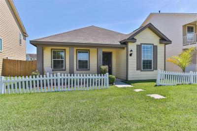 Willis Single Family Home For Sale: 10856 S Lake Mist Lane
