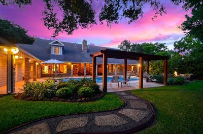 Houston Single Family Home For Sale: 710 Kingsmark Drive
