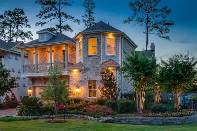 Shenandoah Single Family Home For Sale: 132 N McKinley Landing Lane N