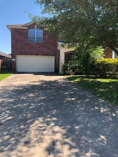 Manvel Single Family Home For Sale: 3102 Mustang Meadow Lane