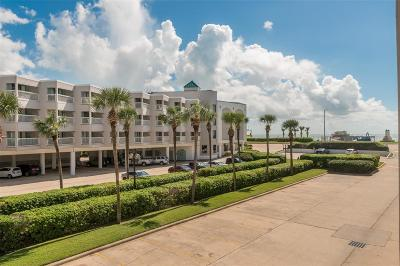 Galveston Condo/Townhouse For Sale: 6102 Seawall Boulevard #177