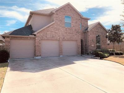 Rosenberg Single Family Home For Sale: 222 Summer Gate Court