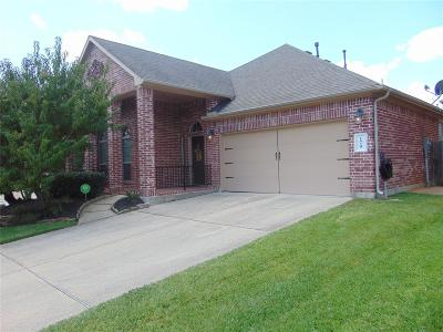 Conroe Single Family Home For Sale: 179 Maple Grove Drive