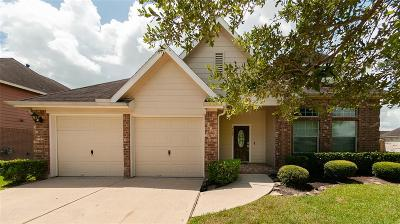 Pearland Single Family Home For Sale: 4108 Parry Drive