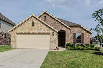 Pearland Single Family Home For Sale: 2810 Parkside Village Court