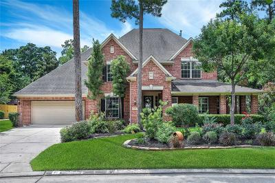 The Woodlands Single Family Home For Sale: 15 Graylin Woods Place
