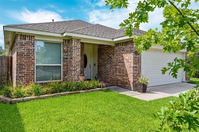 Single Family Home For Sale: 24142 Tayloe House Lane