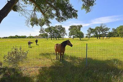 Austin County Farm & Ranch For Sale: 4975 Smith Road