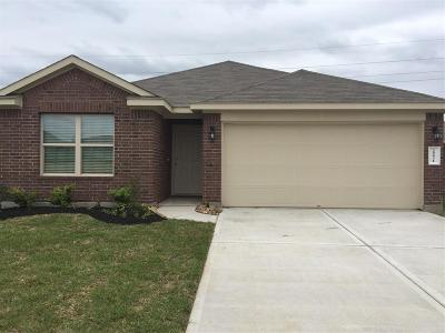 Katy Single Family Home For Sale: 20831 Wedgewood Chase Way