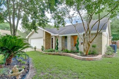 Katy Single Family Home For Sale: 5709 Village Way Drive